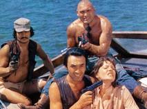 Пираты XX века