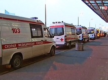 """Машины скорой помощи в аэропорту """"Внуково"""""""