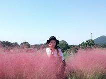 Розовые поля в Китае