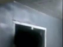 Объевшийся медвежонок застрял в форточке на Камчатке