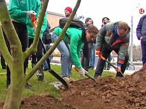 """Участники """"Активного гражданина"""" высаживают деревья"""
