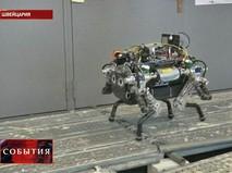 Робот-собака