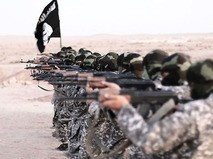 Террор и его команда