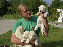 "Директор крымского сафари-парка ""Тайган"" Олег Зубков"