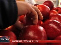 """11 Смотрите в 22:30 специальный репортаж """"Запретный плод"""""""