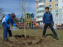 Дети поливают посаженное дерево в Москве