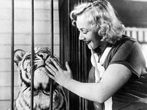 """Кадр из фильма """"Укротительница тигров"""""""