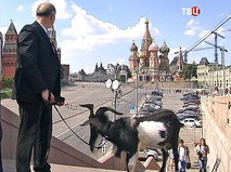 Козел Тимур гуляет по Москве
