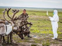 Специалисты в костюмах биозащиты устраняют очаги сибирской язвы