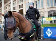 Сотрудник конного полка московской полиции