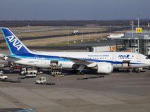 Boeing 787 авиакомпании ANA