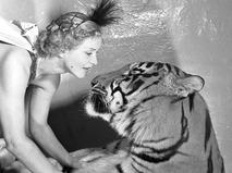 Дрессировщица тигров Маргарита Назарова