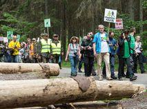 Протестующие требуют остановить вырубку Беловежской пущи в Польше