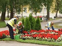 Посадка цветов в московском парке