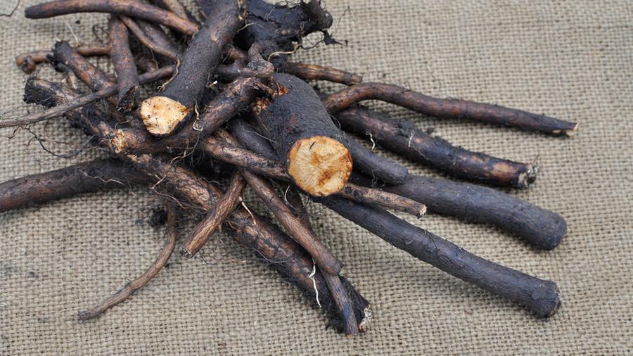 Окопник корень для суставов мрт коленного сустава цена сзао
