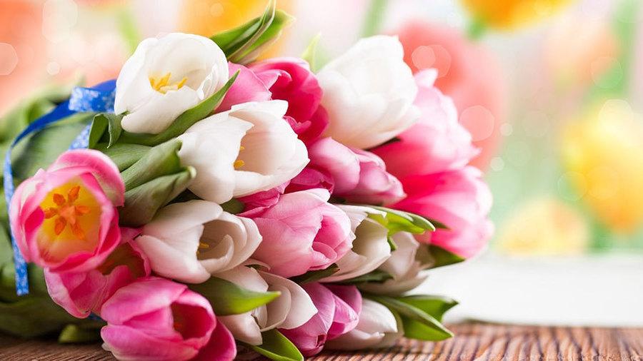 Утро и цветы