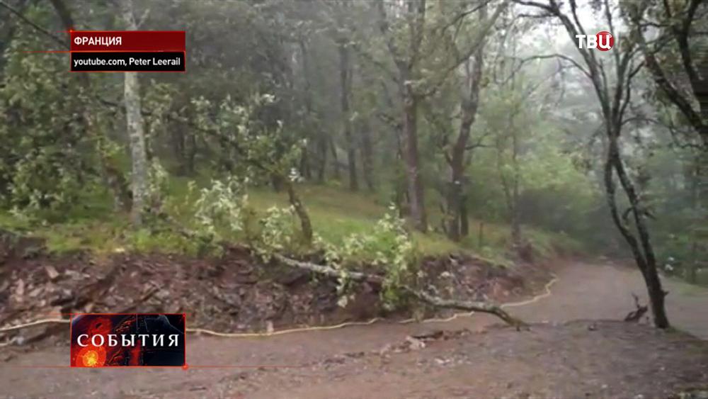 Последствия сильного ветра во Франции