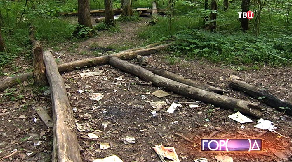 Место незаконного пикника в лесу
