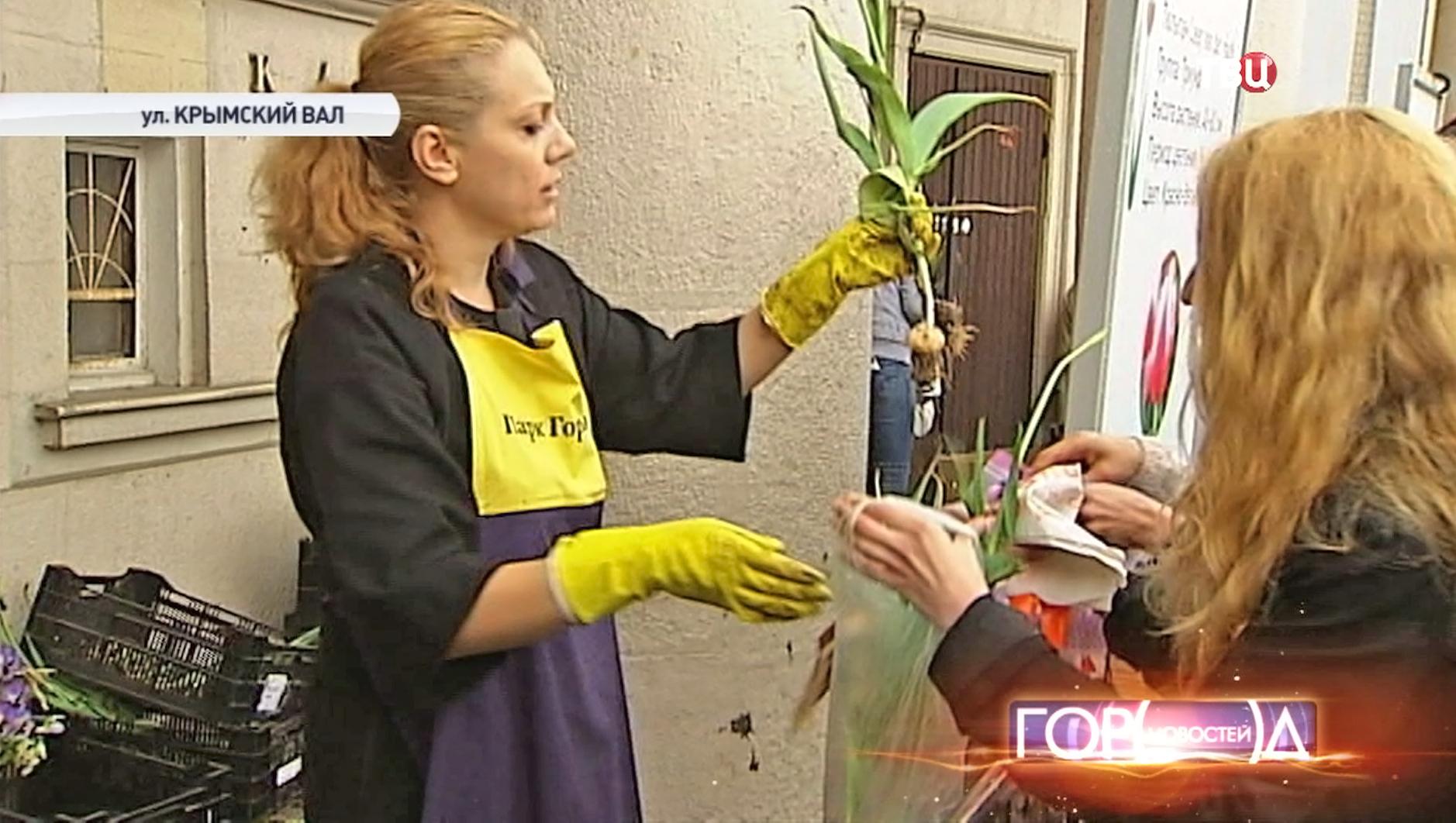 Раздача тюльпанов у ЦПКиО