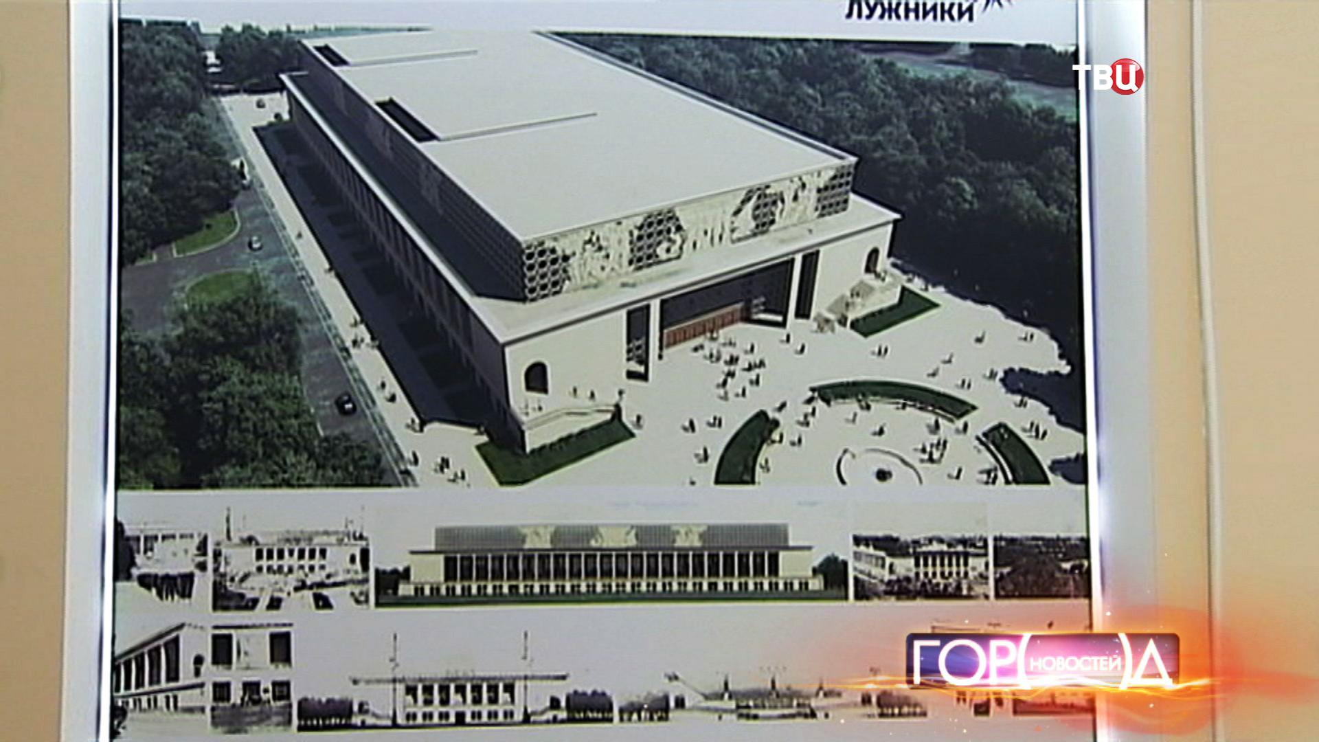 "Концепция перестройки бассейна ""Лужники"""