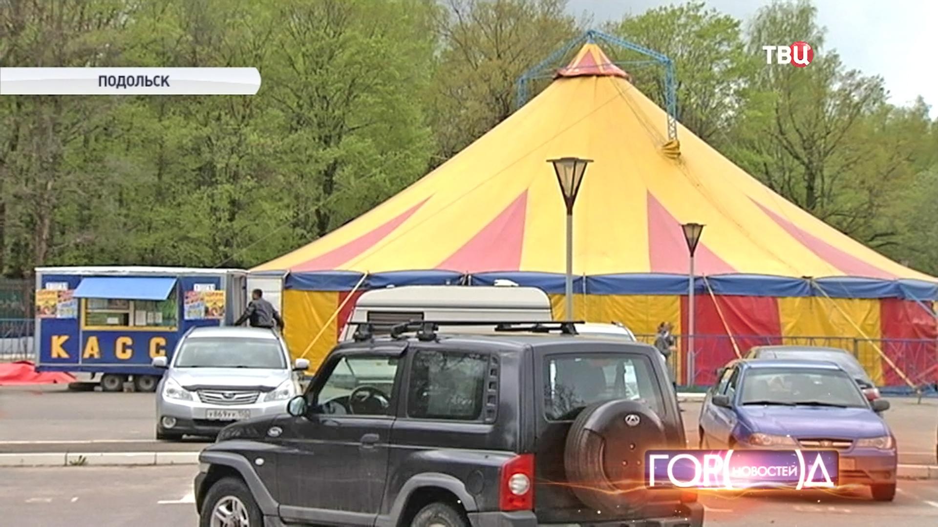 Частный цирк в Подольске