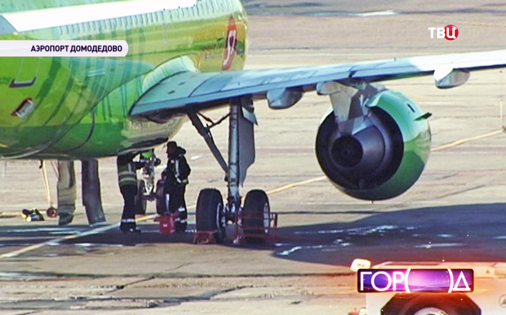 """Самолет авиакомпании S7 в аэропорту """"Домодедово"""""""