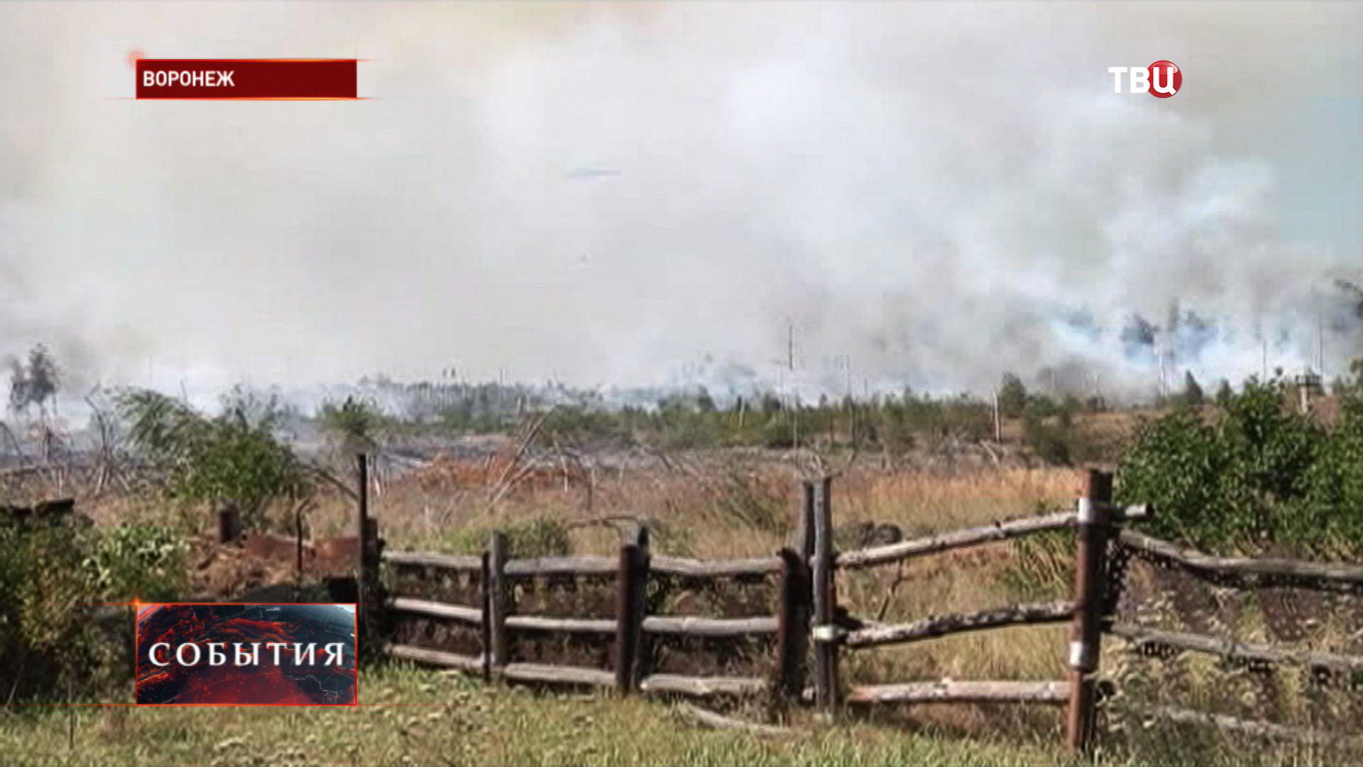 Лесные пожары в Воронежской области