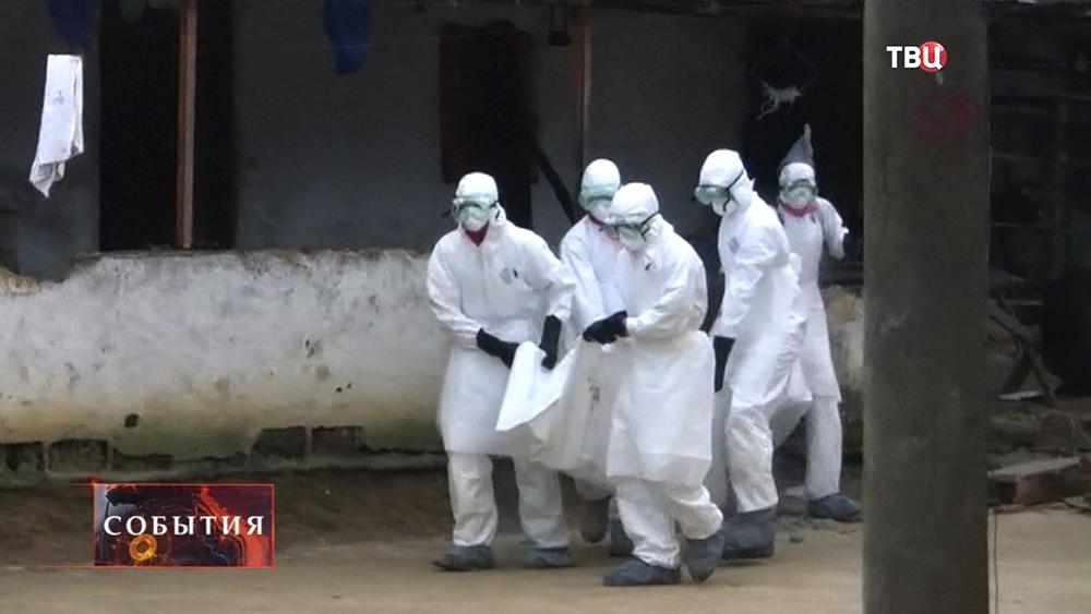 Медики вывозят тела погибших от лихорадки Эбола