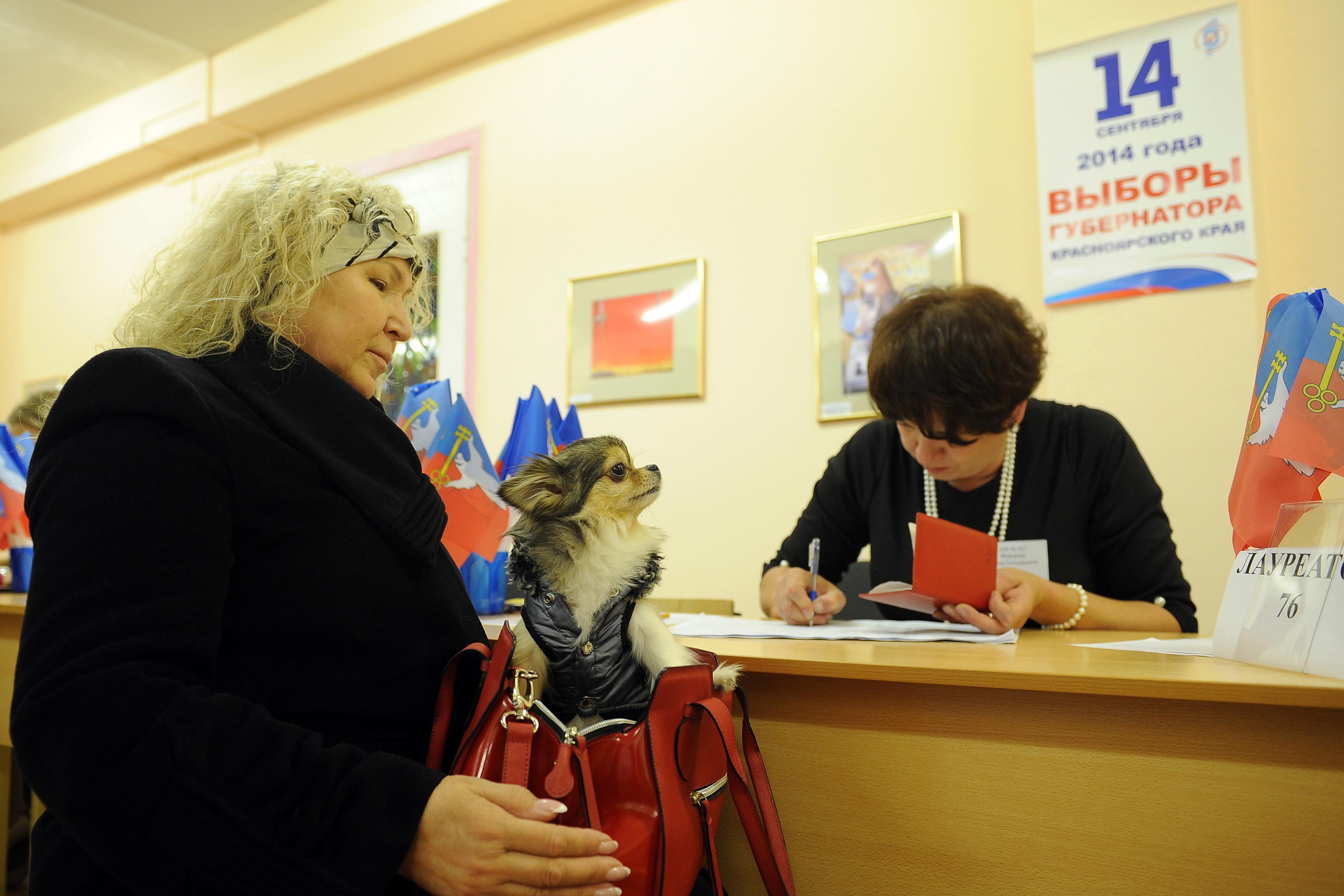 Во время голосования на выборах в единый день голосования