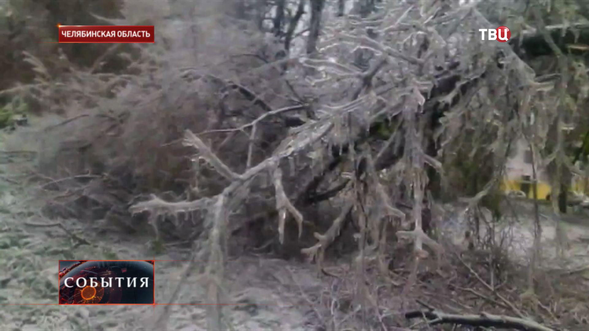 Ледяной дождь в Челябинской области