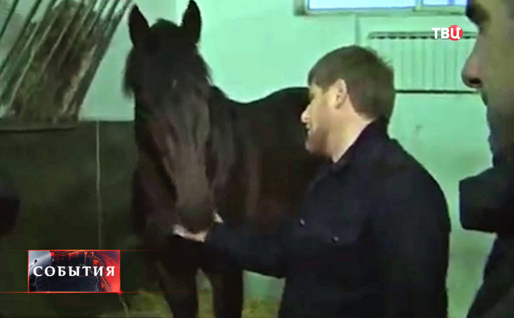 Глава Чечни Рамзан Кадыров с лошадью