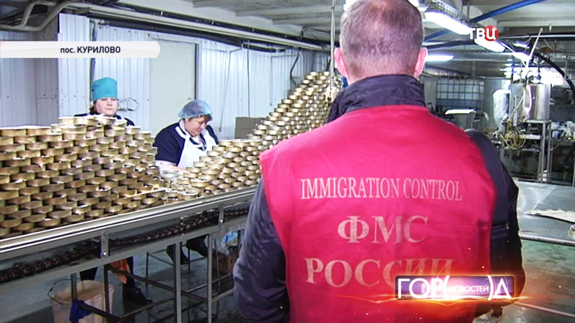 Сотрудник ФМС в цеху консервного завода в поселке Курилово