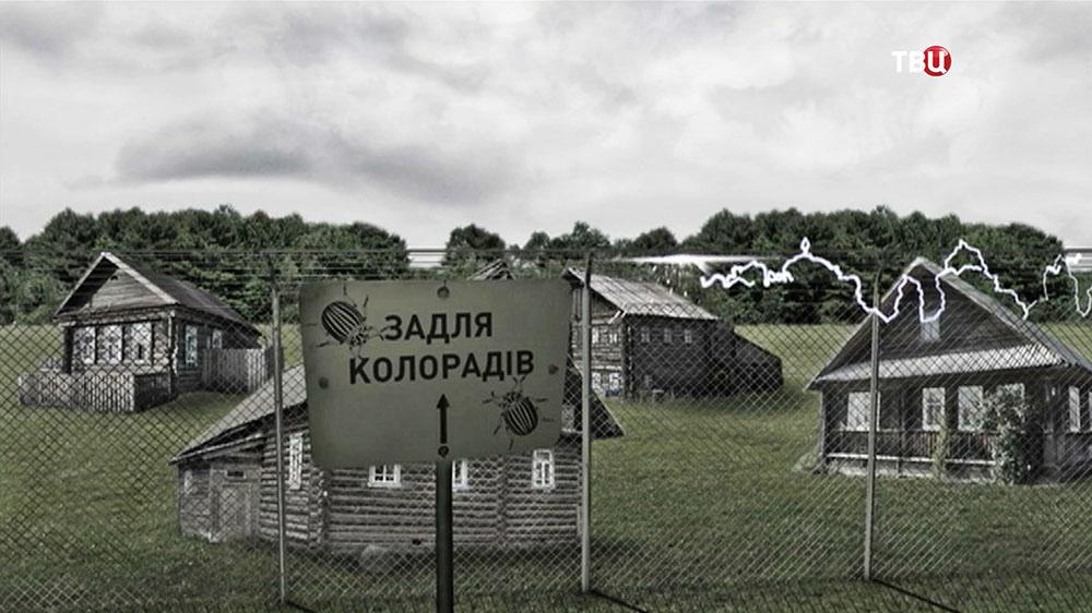 """Инфографика """"Земля коларадов"""""""
