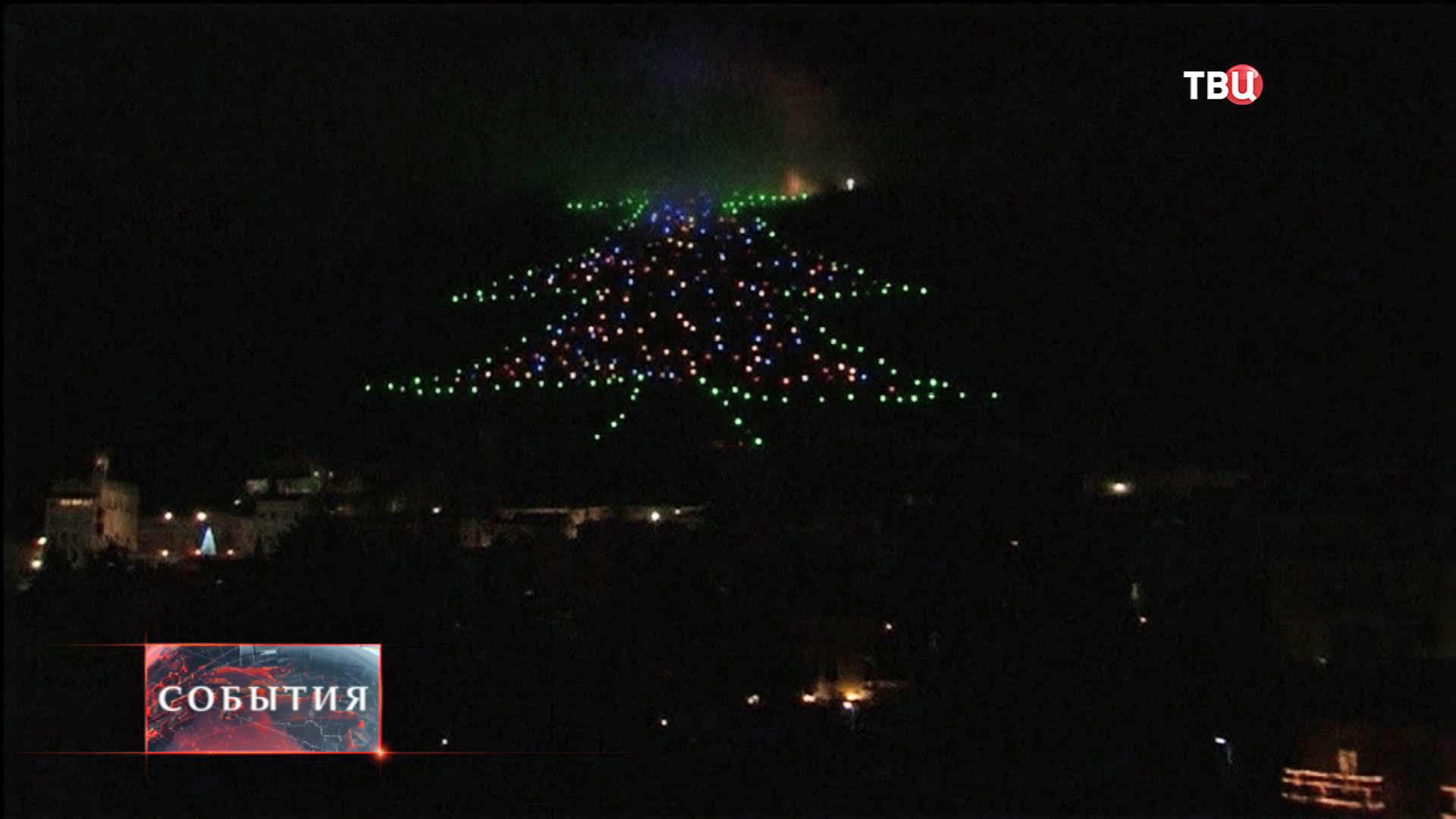 Самая большая рождественская ёлка в мире