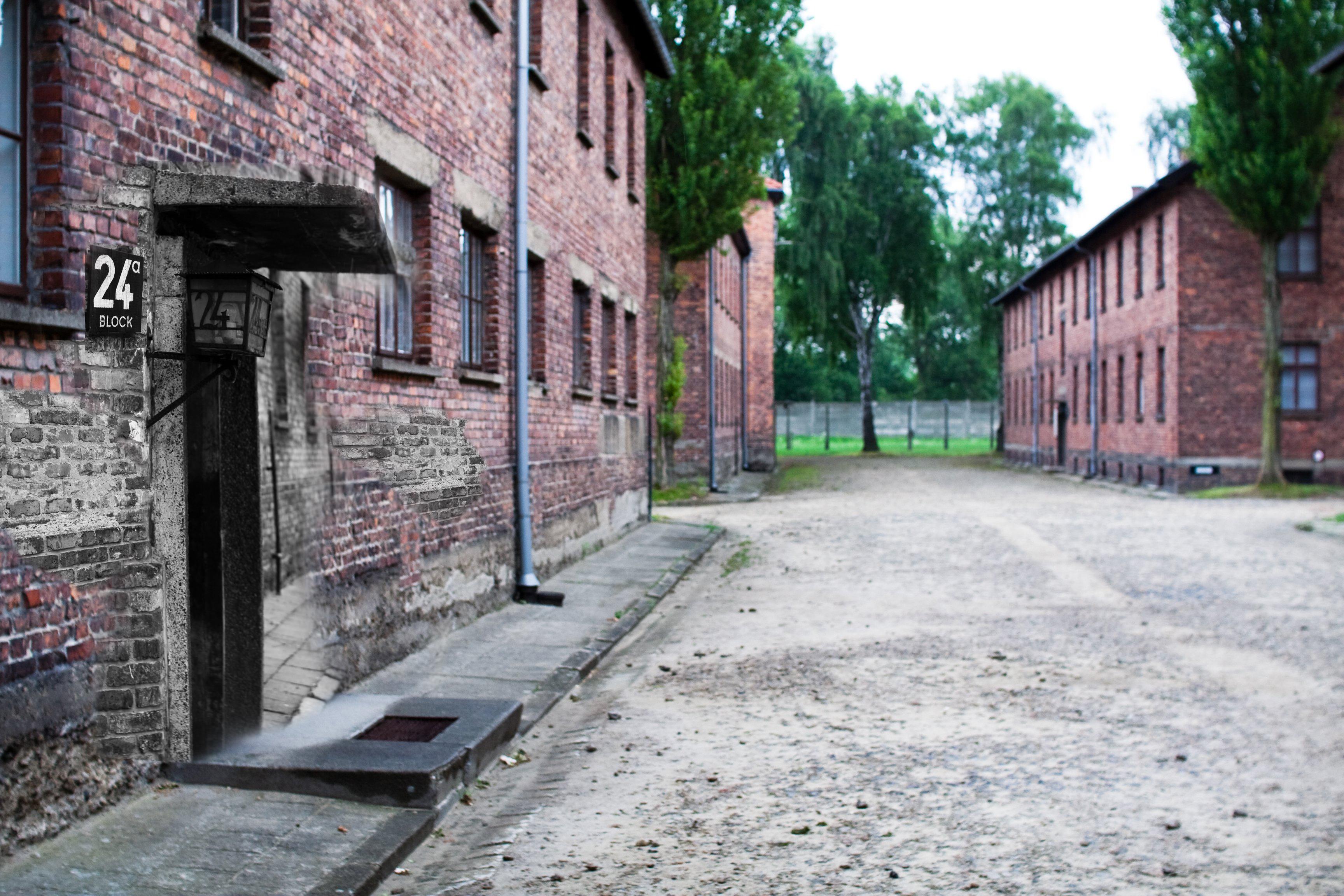 Рассказы про бордели в концлагерях 6 фотография