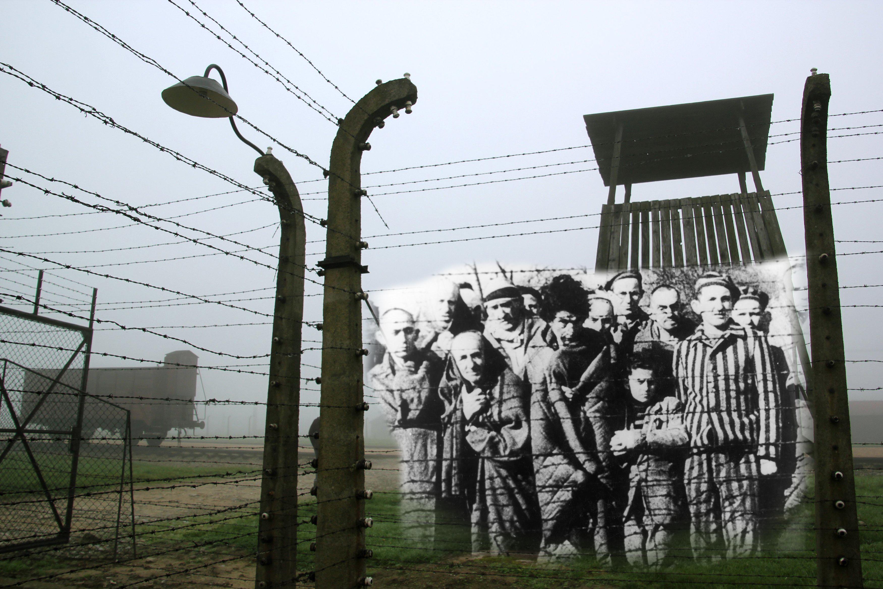 Рассказы про бордели в концлагерях 4 фотография