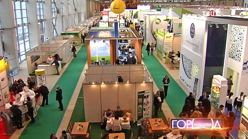 Сельскохозяйственная выставка на ВДНХ