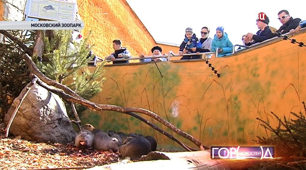 Посетители зоопарка возле вольера с нутриями
