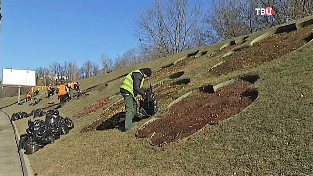Уборка газонов после зимы