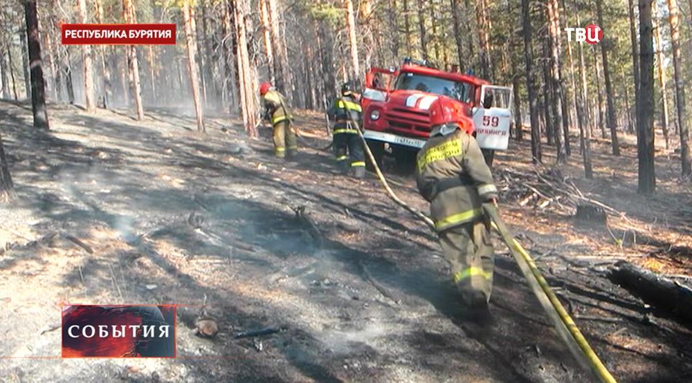 Пожарный расчет во время тушения лесного пожара