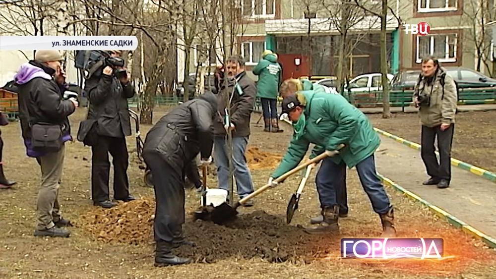 """Высадка деревьев и кустарников в рамках программы """"Миллион деревьев"""""""