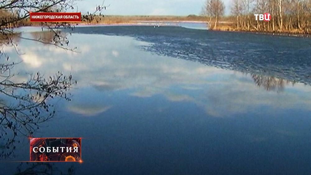 в нижегородской области разрешено ловит