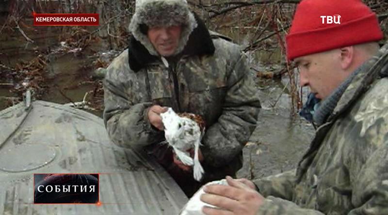 Наводнение в Кемеровской области