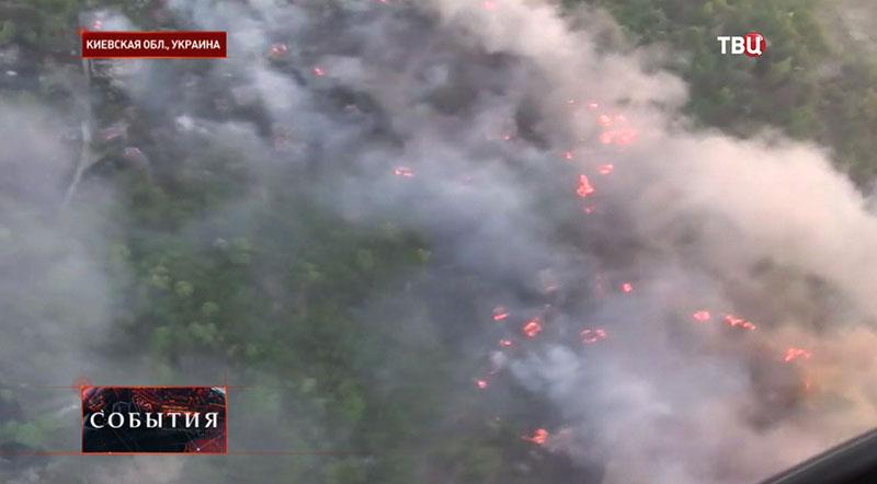 Лесные пожары в Киевской области