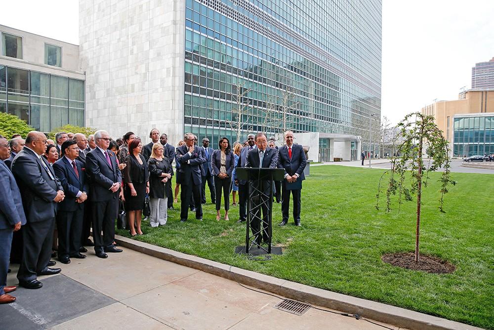 """Высаживание """"дерева мира и единства"""" в честь 70-летия окончания Второй Мировой войны у здания ООН"""