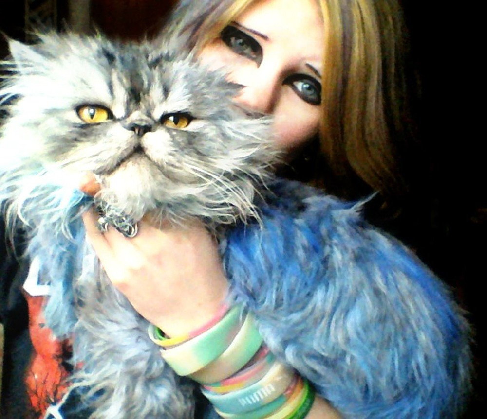 Мучительница кота из Магнитогорска