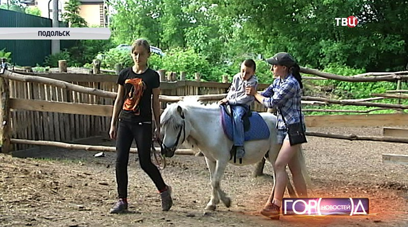 Лошадь катает ребенка