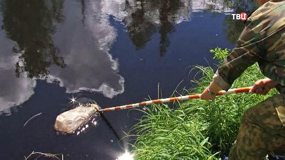 Инспекторы рыбнадзора берут пробы воды