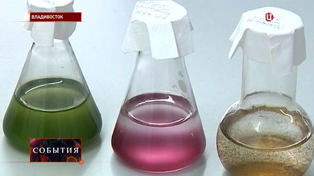 Биохимический анализ воды