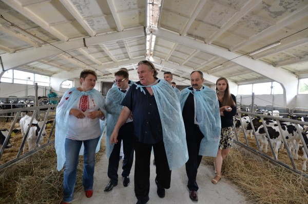 Актер Жерар Депардье знакомится с работой животноводческого хозяйства
